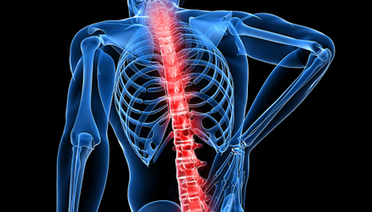 Billing Paravertebral Facet Joint Nerve Destruction | Network Marketing, Online Business, Work at Home Mom | Scoop.it