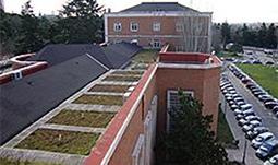 Las oportunidades de la agricultura urbana - Ambientum | Cultivos Hidropónicos | Scoop.it