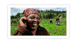 """ICT for climate-smart agriculture and """"green growth"""": Online forum 5-16 March 2012 