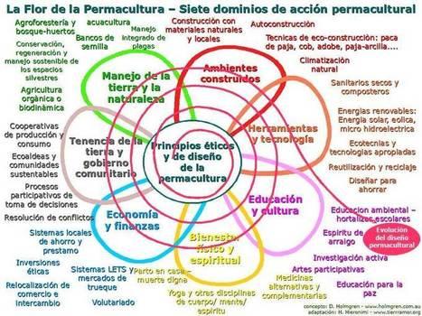 Los siete dominios de acción permacultural: La Flor de la Permacultura | ECOagricultor | Arquitectura | Scoop.it