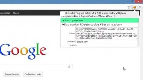 Comment accéder à la nouvelle interface de Google avant tout le monde? | Time to Learn | Scoop.it
