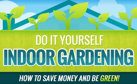 Do It Yourself Indoor Gardening: How To Save Money And Be Green | Residential Spaces | Scoop.it