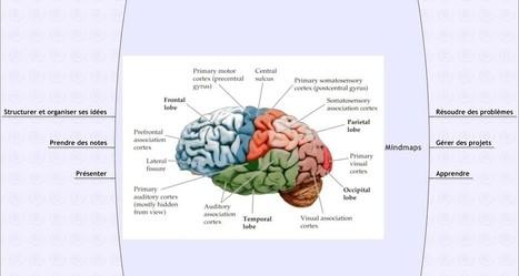 Outil de mind-mapping simple, rapide et... gratuit - Aloha coaching | Cartes mentales | Scoop.it