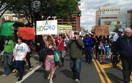 OpEdNews Article: Article: 12 Ways to Rid the Planet of GMOs and Monsanto's Roundup  - EcoWatch | sustainablity | Scoop.it