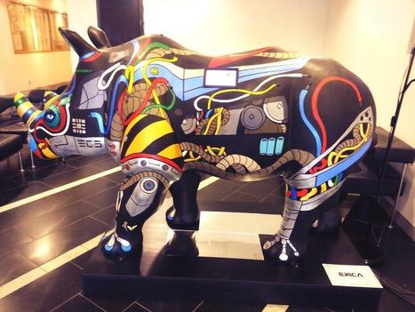 Twitter / zsk: Raspberry Pi powered rhino ...   Raspberry Pi   Scoop.it