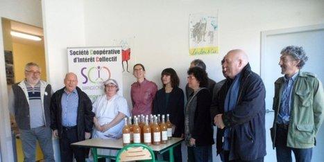 De plus en plus de menus 100 % locaux à la cantine | Agriculture en Dordogne | Scoop.it