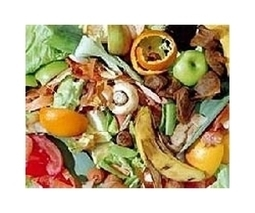 Reducing waste of food: A key element in feeding billions more people | Sustain Our Earth | Scoop.it