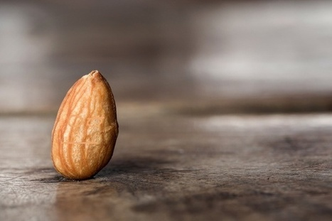 The Dark Side of Almond Use | @FoodMeditations Time | Scoop.it