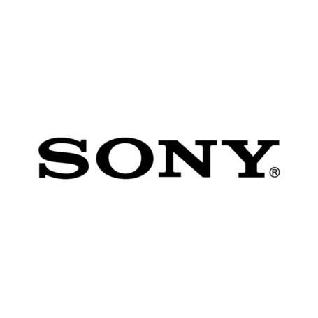 Sony Entertainment Spinout 'Inevitable,' Despite Claims to Contrary | Music business | Scoop.it