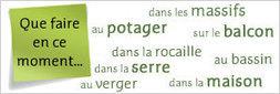 (FR) – Lexique du jardinage en français | plantes-et-jardins.com | CDI RAISMES - MA | Scoop.it