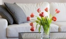 Best Upholstery Cleaner reviews- Upholstery Cleaners 101 | Upholstery Cleaning in Atlanta | Scoop.it