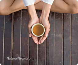 Six health benefits of drinking more green tea - Natural News | Living Well Connections | Scoop.it