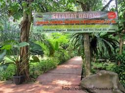 Inilah 5 Tujuan Wisata di Depok nan Indah | wisata indonesia | Scoop.it