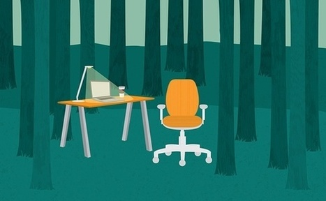 The Perfect Office for Introverts | Office furniture | Scoop.it