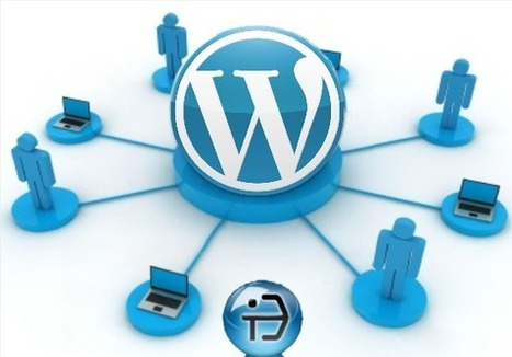 The Power of WordPress and Benefits of Outsourcing | Open Source Software Development Services | Scoop.it