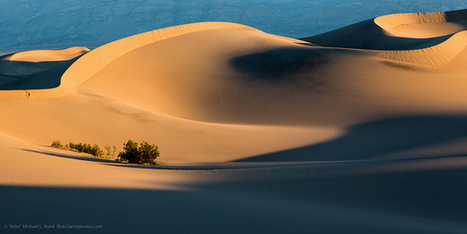 Mesquite Flat Sand Dunes  at sunrise 25 Feb 2013 in Death Valley | desert photography | Scoop.it