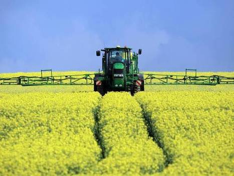 Pesticide ban has not hit crops, with bumper oilseed harvest forecast | Sustain Our Earth | Scoop.it