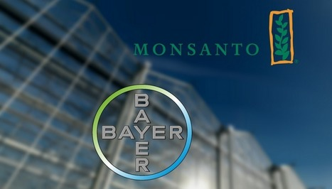 Bayer and Monsanto: A Marriage Made in Hell | Liberty Revolution | Scoop.it