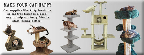Cat Furniture, Cat Condos and Towers, Cat Trees, Cat Houses | Custom made cat condos | Scoop.it