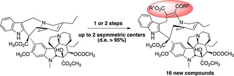 Synthesis and Biological Evaluation of a New Series of Highly Functionalized 7′-homo-Anhydrovinblastine Derivatives | La perception extra-sensorielle durant telephone est en plein impulsion | Scoop.it