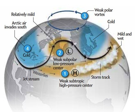 """What Is This """"Polar Vortex"""" That Is Freezing the U.S.? 