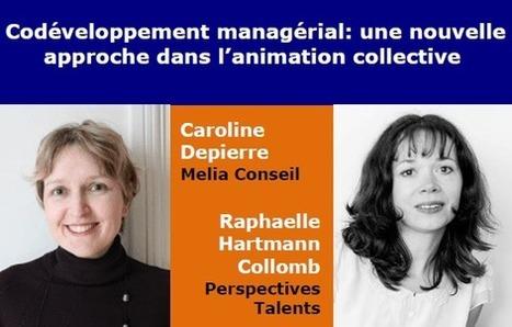 Codéveloppement managérial: une nouvelle approche dans l'animation collective - Coordination SUD | Codéveloppement | Scoop.it