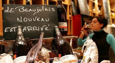 Beaujolais nouveau: comment ne plus boire idiot - Slate | Ressources FLE | Scoop.it