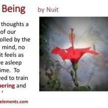 Mindfulness Training Exercises   Visual.ly   Power of Mind & Mindfulness   Scoop.it