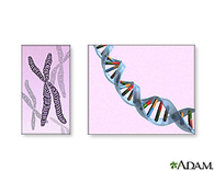 Genetic Testing: MedlinePlus | Genetic Testing | Scoop.it