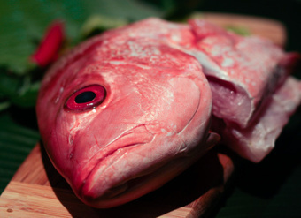 You have no idea what that fish you're eating is, so don't pretend | Sustain Our Earth | Scoop.it