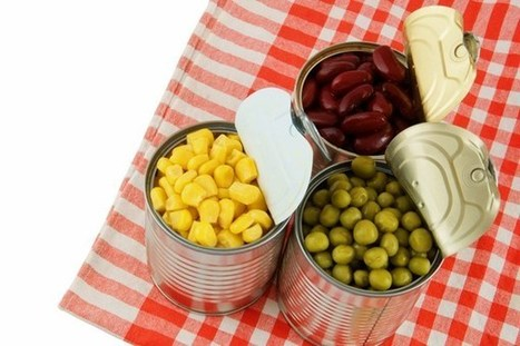 FDA 'Borders on Scientific Misconduct' with Botched BPA Study, Scientists Say | Food issues | Scoop.it
