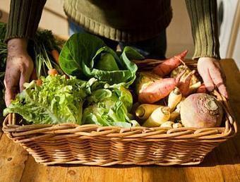 Sociedade do risco e o consumo de alimentos orgânicos | Copa Orgânica | Scoop.it