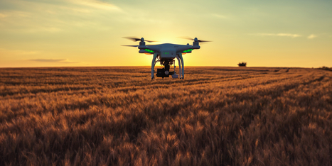 Why Drones Are Finding a Home on the Farm | MishMash | Scoop.it