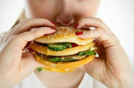 High levels of phthalates detected in people who eat fast food | Food issues | Scoop.it