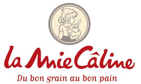 L'année 2012 s'annonce très animée pour La Mie Câline | Actualité de la Franchise | Scoop.it
