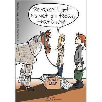 Bubble wrap, anyone? | Equestrian Humor | Scoop.it
