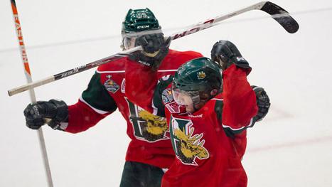 Mooseheads looking to bring home Memorial Cup - Nova Scotia - CBC News | Nickcows | Scoop.it