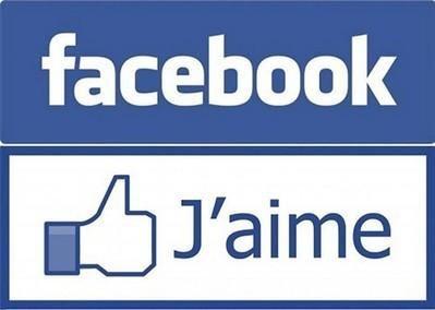 Facebook. La chasse aux fausses mentions «J'aime» est ouverte - Internet - ouest-france.fr   Réseaux Sociaux : Twitter, Facebook, Google+, Pinterest   Scoop.it