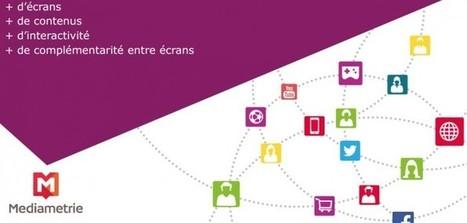 Internet Français : Quelle évolution en 2014 ? | Communication digitale & webmarketing | Scoop.it