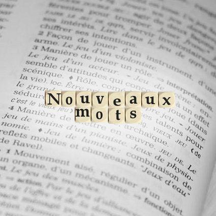 Les nouveaux mots du dictionnaire 2015 | French Authentic Texts | Scoop.it