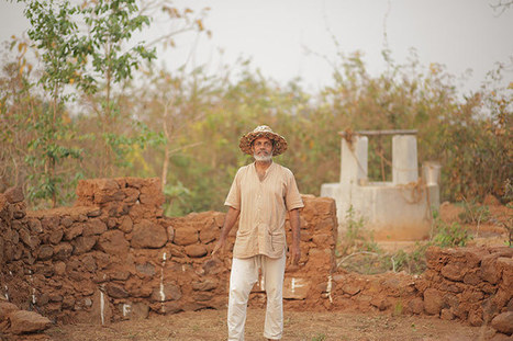 India's seed saviour goes against the corporate grain – in pictures | GMOs & FOOD, WATER & SOIL MATTERS | Scoop.it