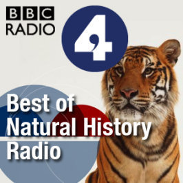 BBC - Podcasts - Best of Natural History Radio | A World of Sound | Scoop.it