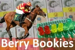 Berry Bookies – A Horse Racing Game For The BerryClip | Raspberry Pi Spy | Raspberry Pi | Scoop.it