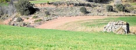 Manresa i la resta del Pla de Bages han batut el rècord històric de sequera | #territori | Scoop.it