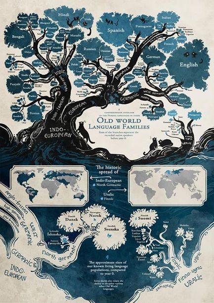 Timeline Photos - El muro de los idiomas   Facebook   english   Scoop.it