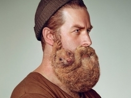 Overgrown Beards Are Like Wild Animals Clinging to Your Face, Schick Ads Say | Psychology of Consumer Behaviour | Scoop.it