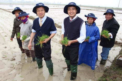 Rice Model Farm Program Launched in Vietnam | DuPont Food Security | DuPont ASEAN | Scoop.it