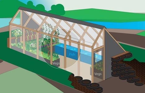 The Greenhouse Of The Future: A Step-By-Step Builder's Guide | Aquaponics | Scoop.it