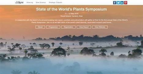 TRAFFIC - Wildlife Trade News - Symposium highlights threats to the world's plants, but solutions are tohand | GarryRogers Biosphere News | Scoop.it