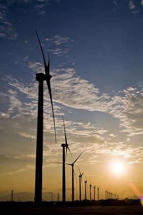 Finding Renewable Energy Sources Promotes a Greener Environment | 2GreenEnergy | The Glory of the Garden | Scoop.it
